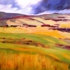 _1_pampas_oil_on_canvas_18h_x_24w_x_1d