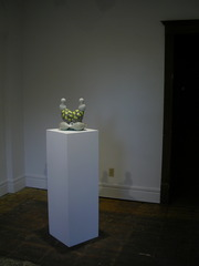 """""""Object Pair #5, Spore Series"""", Sarah Hicks"""