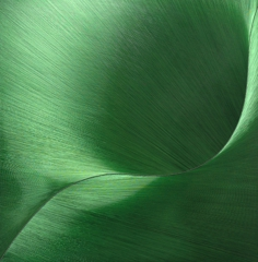 Green Leaf, Gulay Semercioglu