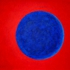 Blue_moon_2009_best_195_x_130_cm__medium_