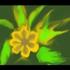 Floral_essence