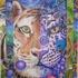 8000_tigers