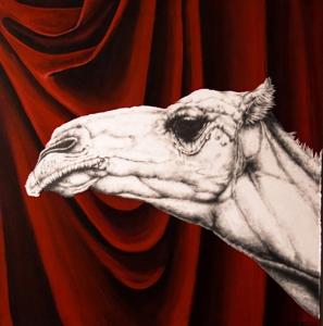 Camel_behind_curtaincrop