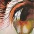 4x6_inch_eye12_copy