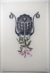 Mimosa Pudica (Yabba), Joscelyn Gardner