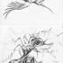Snail-beak