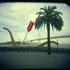 Embarcadero_holga_sf