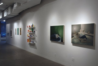 Too Many Words, Installation View,Colleen Heslin, Donna Akrey