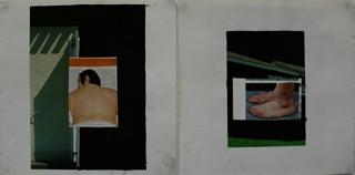Phénix_la vie sexuelle (detail), Benjamin Swaim