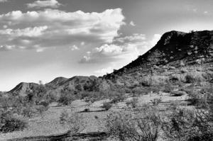Arizona_0909_5bw