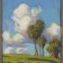 Tim-solliday-pasadena-palms-and-clouds