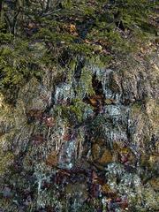 Icefall, Ernest Kafka