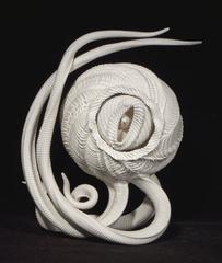Fucanlong, Charles Birnbaum