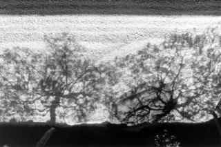 Ombre a Kyoto Japon, Lucien Clergue