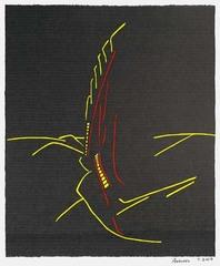 """""""Velvet"""", Anschel 7.2005, Jason Shirriff"""
