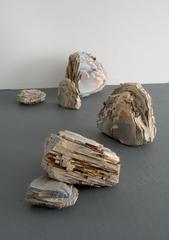 Useable Histories ( installation view ), Carmine Iannaccone