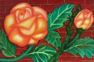 Gardenrose