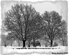Dyker_park_golf_coarse_winter_2009