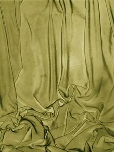 2006_welja0256-1