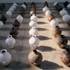 Mahjong_aiweiwei_whitewash