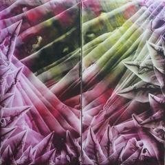 Paysage de Matière, Beatrice Burel