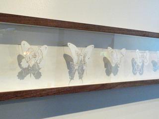 Baden Powell\'s Butterflies, Whitney Lynn