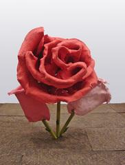 Untitled (Rose 31), Will Ryman