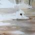 Million_years__2009__oil_on_canvas
