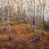 Birches48x60