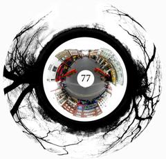 77pic