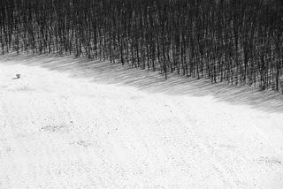Untitled (Midwest Landscape), Gusmano Cesaretti