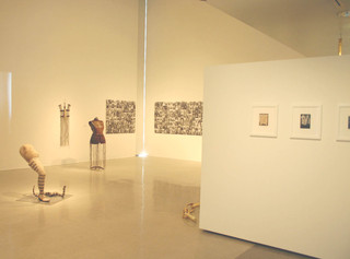 ,Pitzer College, Veronica installation view, Nichols Gallery