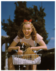 Richard Miller TITLE: Norma Jeane Dougherty-- Puppy Bicycle Basket , Richard Miller