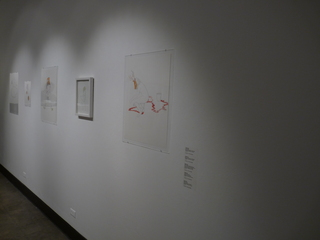 Installation Shot (Carrie Yury),