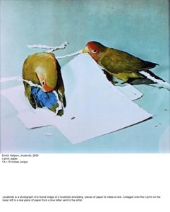 Lovebirdsslide