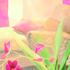 M_ridienne_aux_tulipes_