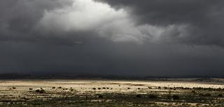Jasper Ranch Cloud, Walter W. Nelson