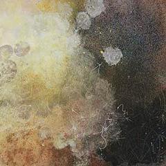 Fulgent Cadences #9, Sue Gurnee