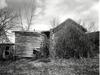 Overgrown_house_gilboa