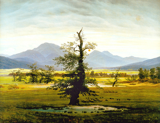 "Northern Romantic Citrus. Transforming ""Lone Oak Tree"" by Caspar David Friedrich, Michael Joaquin Grey"