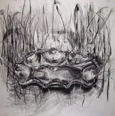 Bread Basket, Sarah Schneckloth