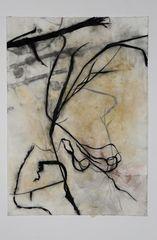 Walks in a Dry Season, Susan Davidoff