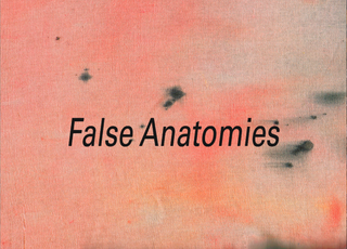 False Anatomies Postcard,