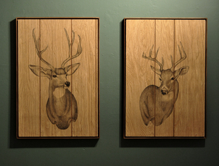Whitetail Deer, Liz Young
