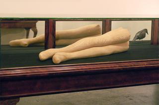 Faux Legs, Liz Young