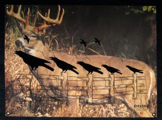 Deer Target, Liz Young