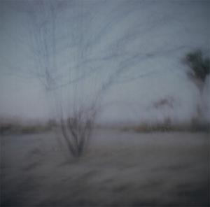 Desert_dusk