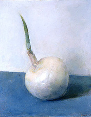 White Onion, Stephen Brown