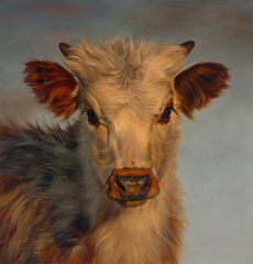 Calf in Winter,Teresa Elliott