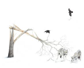 Disconnected - Ravens and Wolves, Joseph Smolinski